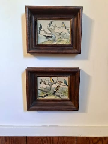 Antique bird prints in your country retreat