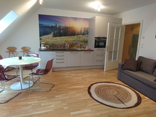 Quiet apartment with a roof terrace for 2-6 people - Wien - Wohnung