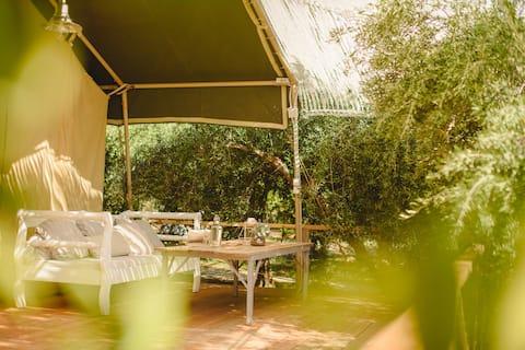 Глэмпинг Поро: Холст домик скрыт между деревьями