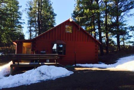 Li'l Red Pagosa Springs Cabin - Pagosa Springs - Ház