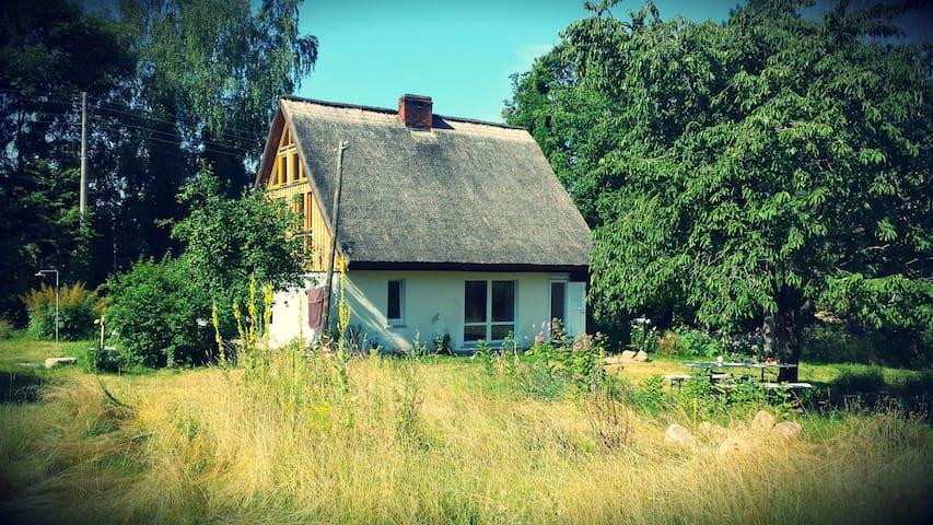 Ferienhaus im Naturschutzgebiet - Dinnies - Haus