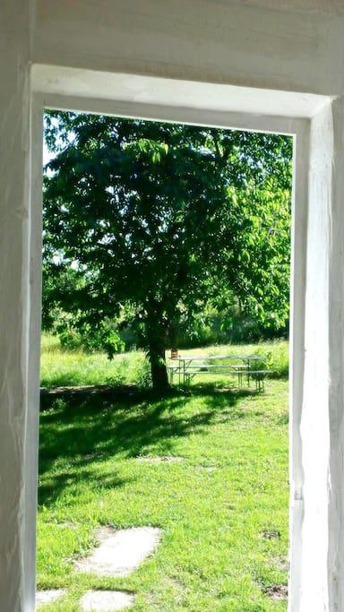 Gemütlicher Sitzplatz unterm Kirschbaum