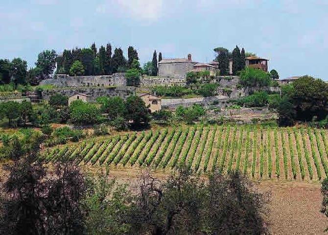 Campriano, villa d'epoca - Campriano - Villa
