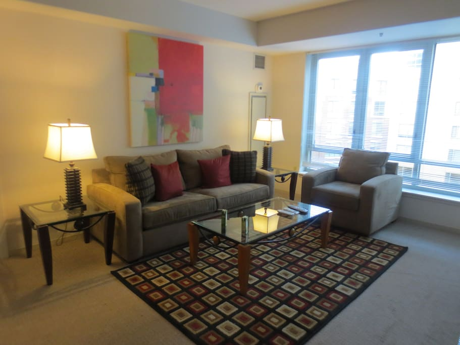 lux 1 bedroom by fenway w wifi apartments for rent in boston