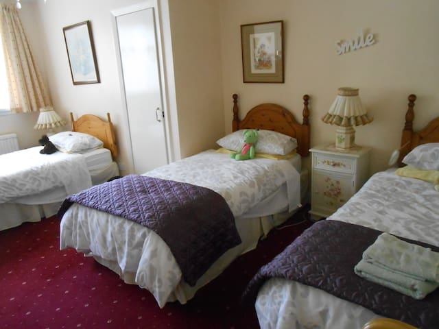 Rose Villa Bed and Breakfast - Forfar