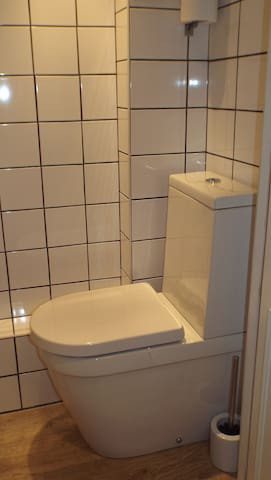Separate private toilet  with sink