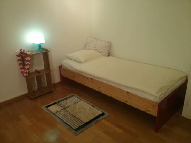 Zurich City private furnished room - Curych - Byt