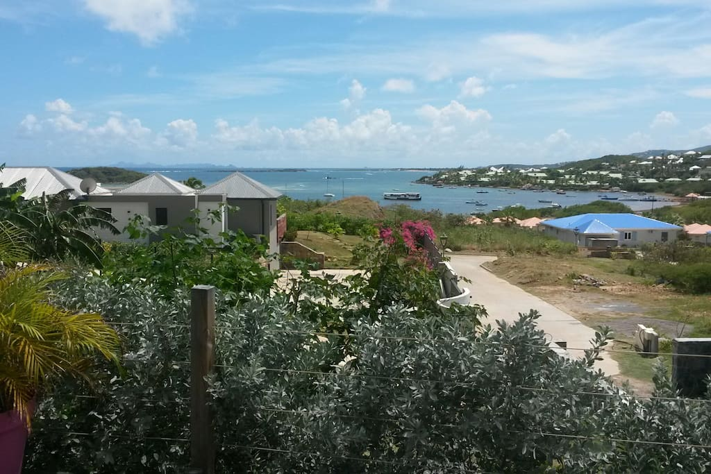 From the Bungalow