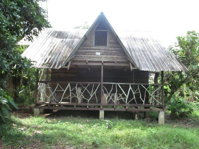 Cabaña rustica  - Tena - Hus
