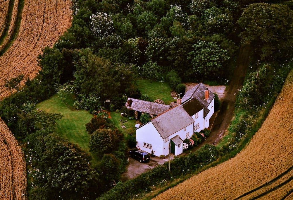 Aerial View - Autumn