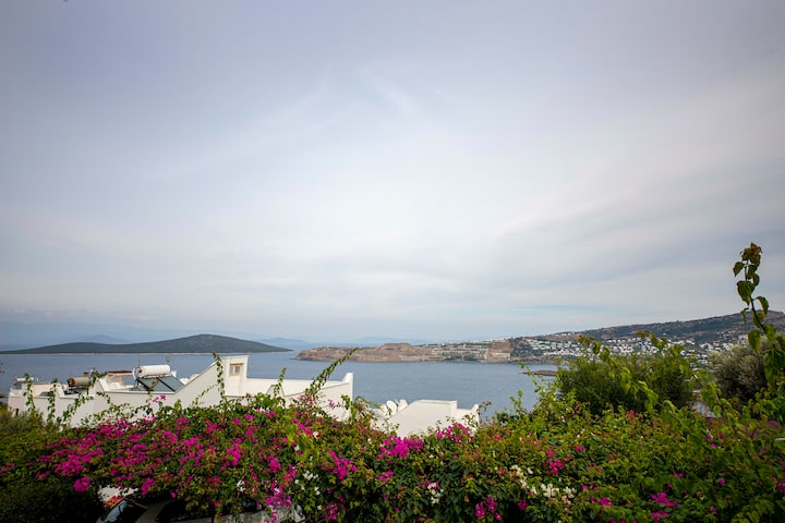 1 BR Villa on Seaside with Garden and View in Bodrum