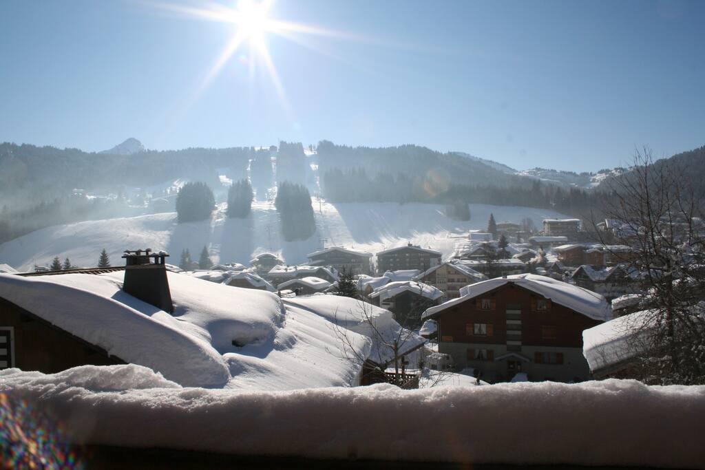 vue d'hiver depuis la terrasse / View from the terrasse