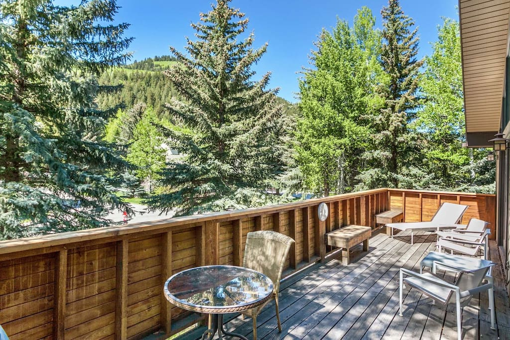Spacious deck with gas grill and comfortable seating.