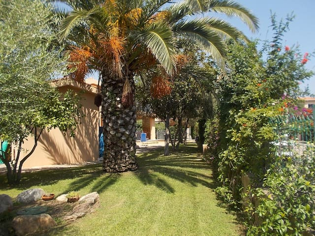 Cozy house with garden near the sea - San Teodoro - Casa