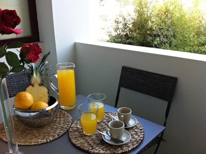 Cozy Apartment Miguel Bombarda