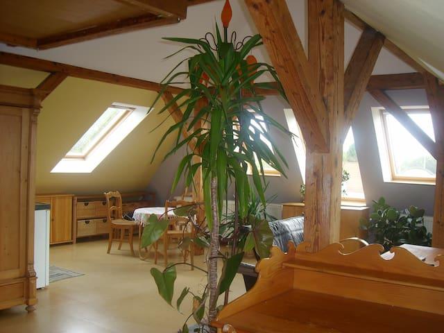 Dachstudio: idyllisch & citynah - Greifswald