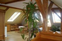 Dachstudio: idyllisch & citynah