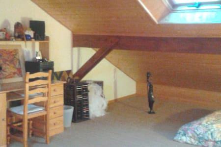 Belle pièce spacieuse ensoleillée de 44 m2  ! - Domène