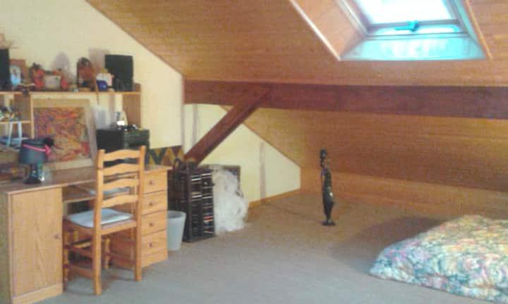 Belle pièce spacieuse ensoleillée de 44 m2  !