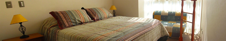 Agradable departamento céntrico - Santiago - Apartment