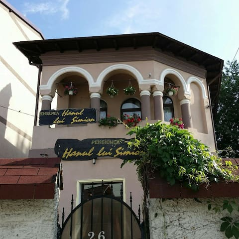 Nice mansion in a historical town. - Curtea de Argeș - Bed & Breakfast