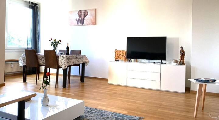 3.5 rooms (2BR) apartment-Badisher BH-Basel-Mönch