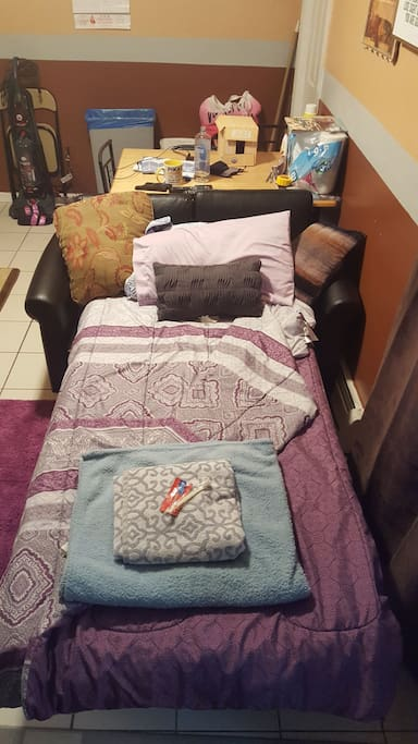common area LIVING room with sofa twin bed sleeper. it has new pillows linens and comforters towel. FREE starter toothbrush and toothpaste for guest. (if available)