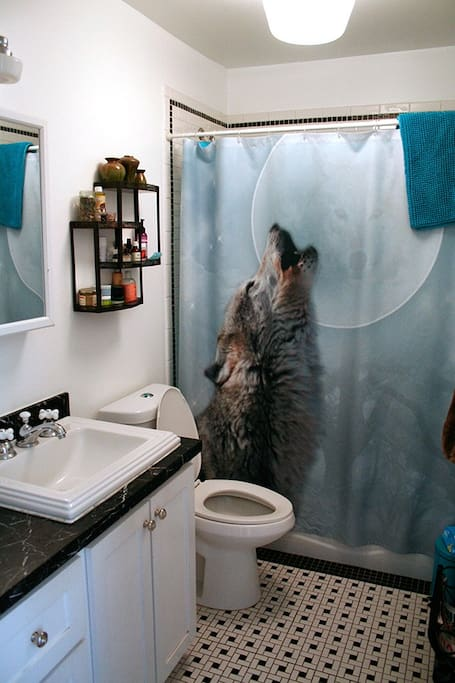 Bathroom. Please don't be sad but the shower curtain has changed.