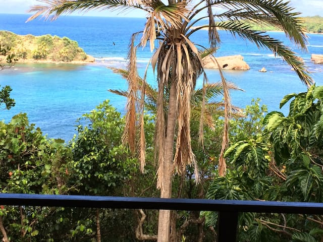Comfortable Studio with great views - Dominica  - Appartement