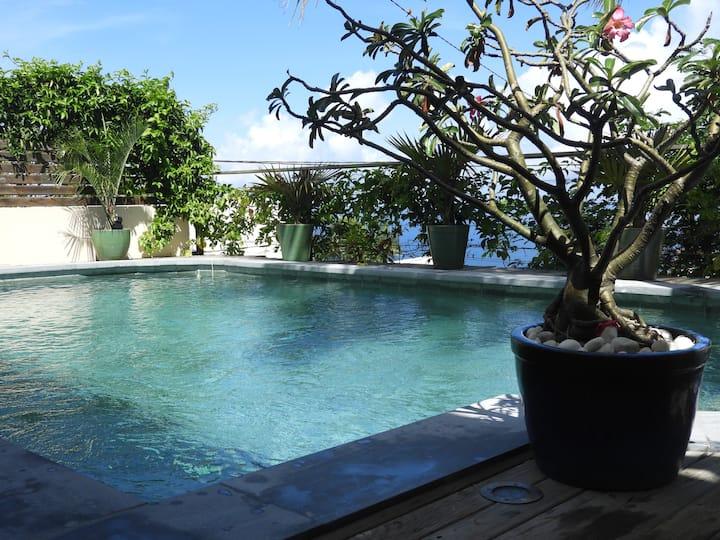 Studio vue Océan, piscine, à 10 min des plages