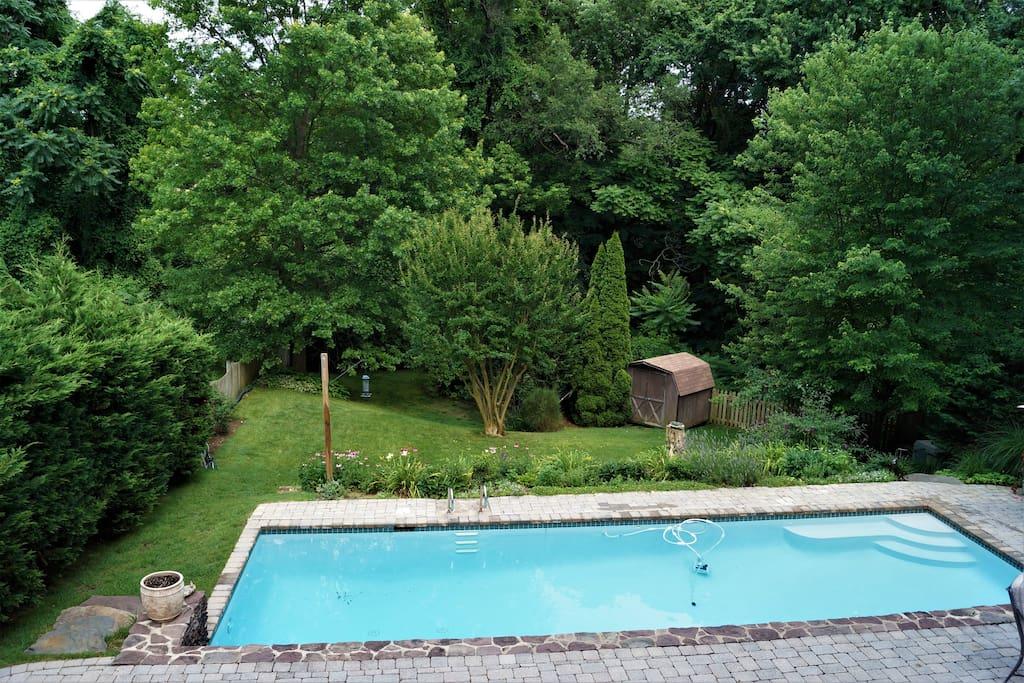 Sparkling pool, swim laps or lounge