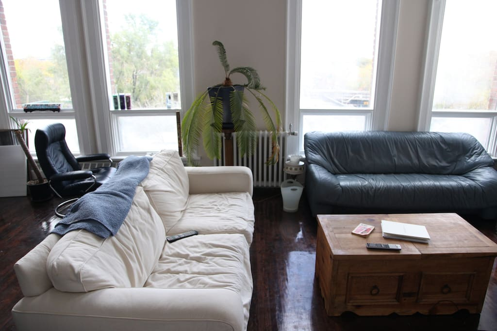 Living area with leather couch, or comfy cotton couch