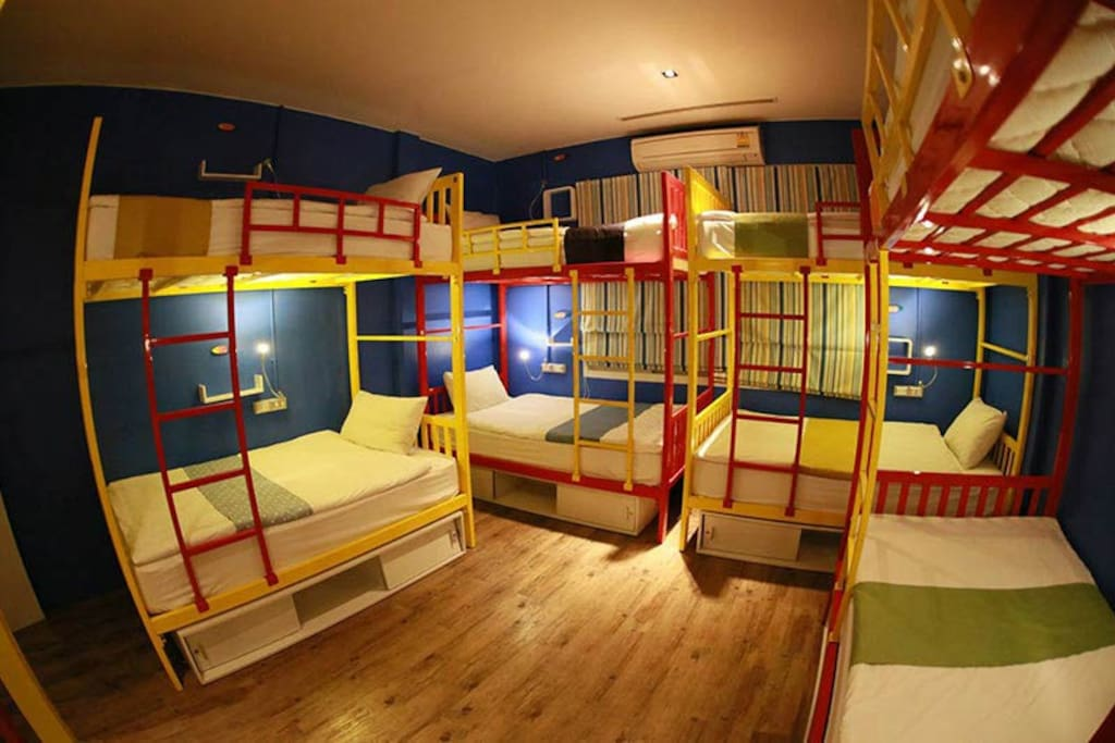 Dorm - bunk bed