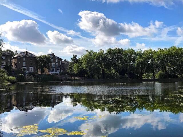 Open, bright flat near Hampstead Heath