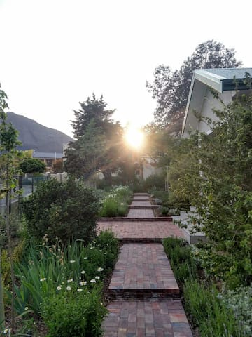 Sunrise: Paved walkway up the garden to Lemon Tree Place
