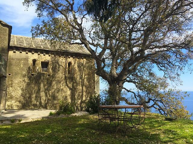 Monte Cristo - Vue sur mer - - Sisco - Pis