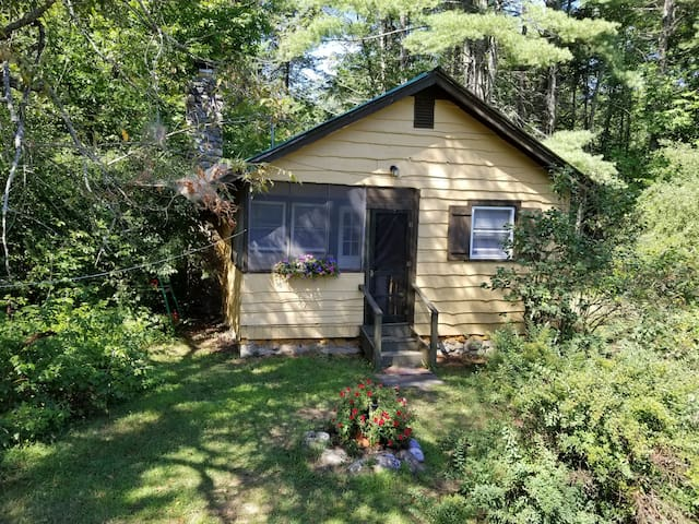 Butternut Adirondack Cabin.
