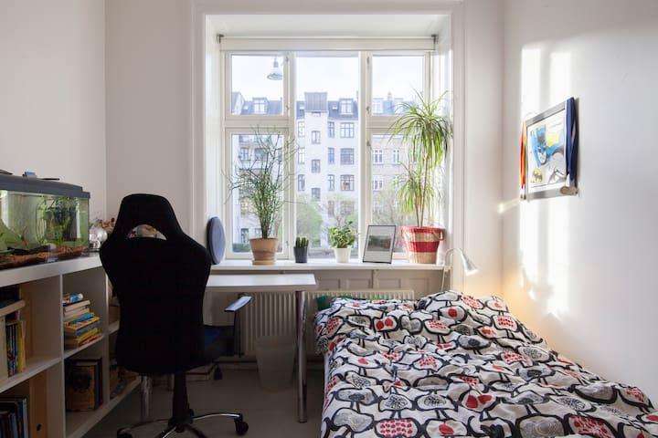 Room in Vesterbro flat