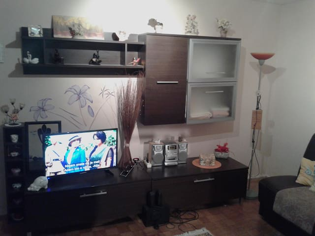 Pleasant apartment in Osijek - Osijek - Apartamento
