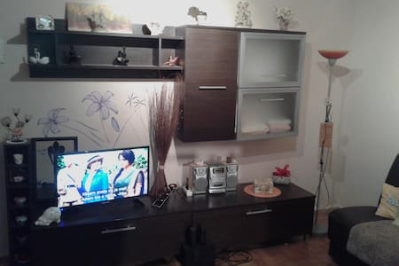 Pleasant apartment in Osijek - Osijek