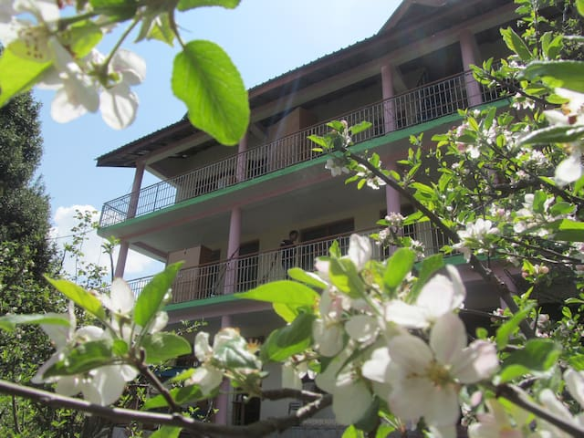 Manali Top Inn - Natural Place For Nature Lover