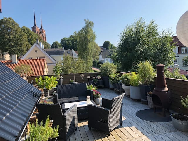 Heart of Roskilde: Apartment with rooftop terrasse