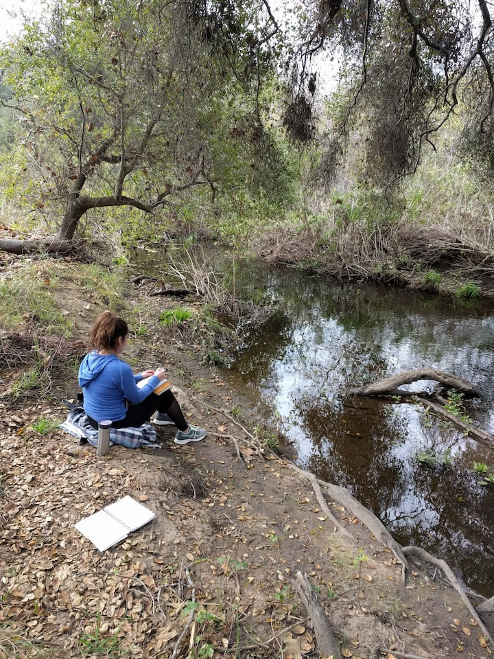 Writing by the water's edge.