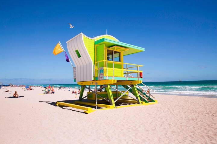 Miami Beach Plus Apartment
