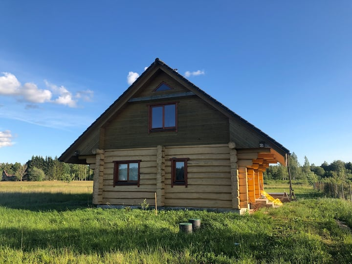 ECO log house