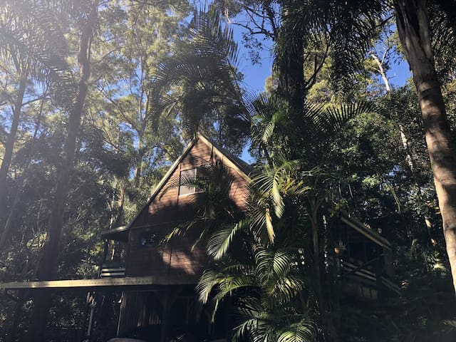 Rainforest Chalet in the Trees