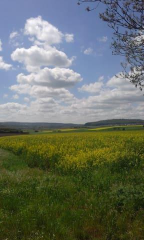 Wiesen, Felder und Seen in direkter Umgebung