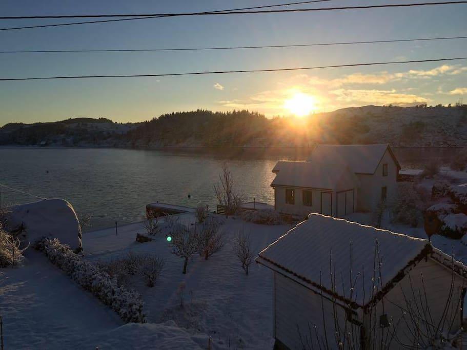 Mid-January, minus 15 degrees Celcius