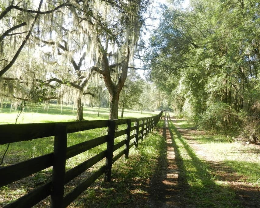 Follow any of the many trails on the farm, perfect for walking or riding.