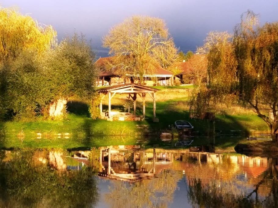 Les Chênes Cornus en automne par soleil couchant